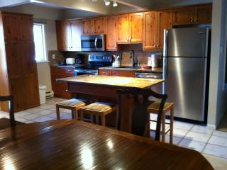 3 Bedroom/2 Bath Condo At Chateau Blanc- Unit 1 - Aspen vacation rentals