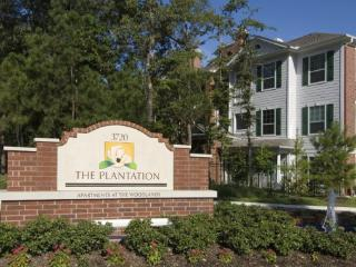 The Woodlands, TX Furnished Apartment - Conroe vacation rentals