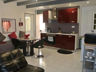 1 bedroom Condo with Internet Access in Saint Die des Vosges - Saint Die des Vosges vacation rentals