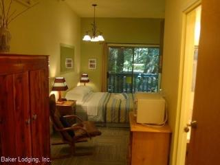 77SLL Budget Priced Condo near Mt. Baker - Glacier vacation rentals