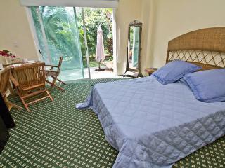 Mini Studio Apartment - Wifi - perfect for 2 - Colonia Luces en el Mar vacation rentals