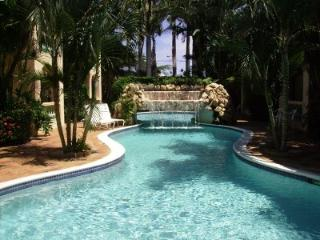 Great Rate, Close To The Beach, Affordable Paradis - Noord vacation rentals