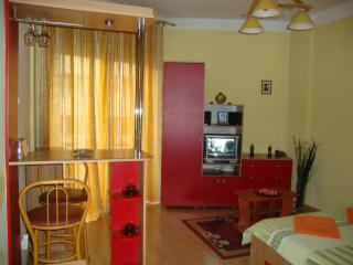 Quiet studio near Cismigiu Gardens - Bucharest vacation rentals