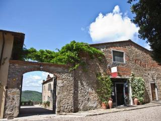 Cozy apartment Ginestre in Montelucci near Chianti - Pergine Valdarno vacation rentals