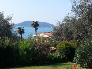 Proprietà Fabbricotti - Lerici vacation rentals