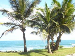 V-1 So close to the ocean! - Cabarete vacation rentals