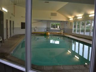 Surftides Plaza # 266 - Lincoln City vacation rentals