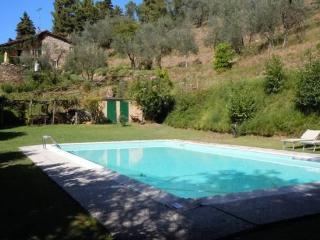Villa Istrice - Lucca vacation rentals
