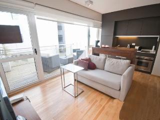Lujo estudio en recoleta para 2 pax - Buenos Aires vacation rentals