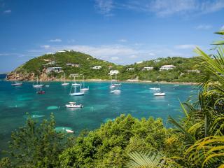 Luxury 6 Bedroom Beachfront Villa w/Pool & Spa - Cruz Bay vacation rentals