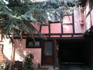 Alsace Small House Of Character - Bas-Rhin vacation rentals