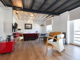 Designer Loft Studio in the heart of the city - Istanbul vacation rentals