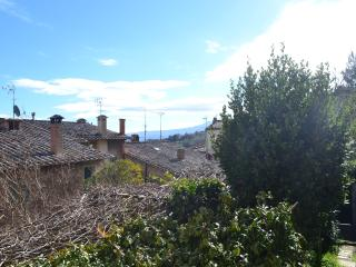 rustic apartment in the historical center of Montalcino - Montalcino vacation rentals