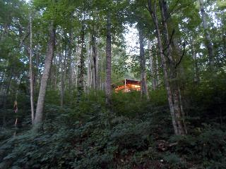 """Feels like a giant tree house"" - Mountain Retreat - Maggie Valley vacation rentals"