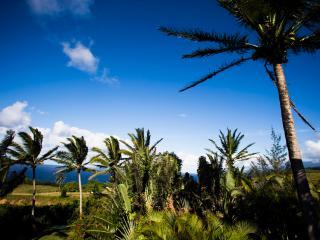 Spectacular Ocean/Mountain Views, Honeymoon, Maui - Haiku vacation rentals