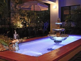 PENTHOUSE with a Garden 1min Azabu Juban - Kanto vacation rentals
