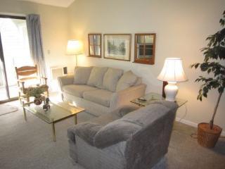 BBALI - Brewster vacation rentals