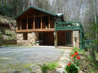 Gorgeous 2 bedroom Cabin in Sugar Grove - Sugar Grove vacation rentals