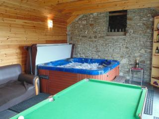 Cottage Private Hot Tub in Log Cabin Brynmeillion - Llandysul vacation rentals