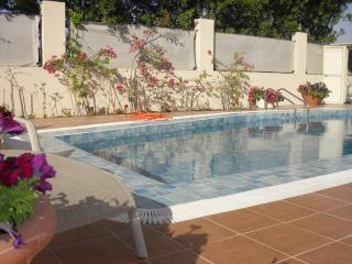 4 bedroom villa with private swimming pool - Ras Al Khaimah vacation rentals