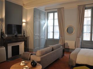 Suite Voltaire, boutique studio apartment - Carcassonne vacation rentals