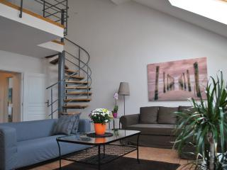 Modern 2 bed & 2 bath Duplex City Apartment - Prague vacation rentals