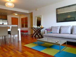 Modern 2BD apt. in South Beach(FSBV1307) - San Francisco vacation rentals