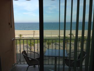 Saint Cyprien plage - front de mer -vue imprenable - Saint-Cyprien-Plage vacation rentals