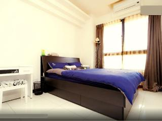 DNApartment 30mins 2 Airport Taiwan - Taiwan vacation rentals