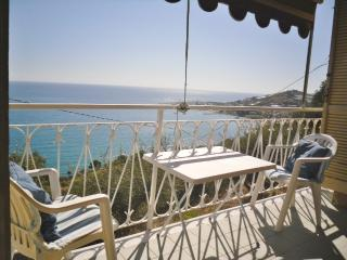 Nice 1 bedroom Apartment in Cipressa - Cipressa vacation rentals