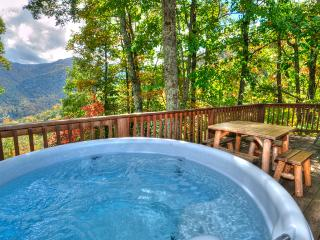Cozy log cabin tucked in the mountainside, Views!! - Balsam vacation rentals