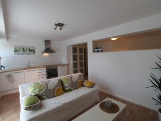 Modernes Apartment zum Wohlfühlen Ubstadt-Weiher - Heidelberg vacation rentals