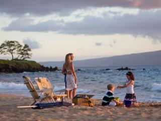 Ho'olei Beautiful Home, Close to Pool and Beach - Wailea vacation rentals