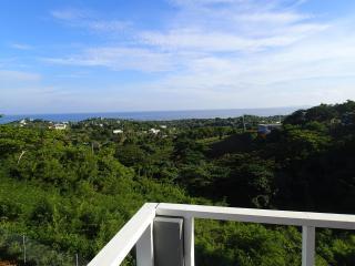 Vista Borinquen House - Isla de Vieques vacation rentals