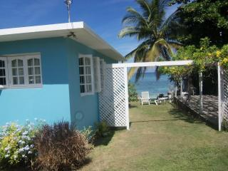 Eden Sands Beachfront Villa - Ocho Rios vacation rentals
