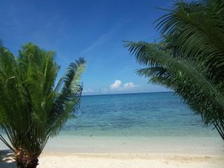 Ocho Rios Beachfront Villa - Ocho Rios vacation rentals