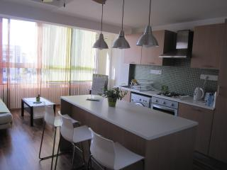 Central Cosy with a View - Nicosia vacation rentals