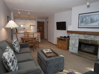 Aspens #314, 1 Bdrm, Ski-in Ski-out, Serene Forest View, Free Wifi - United States vacation rentals