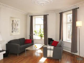 Large and Light Filled 2BR in heart of Oslo Center - Oslo vacation rentals