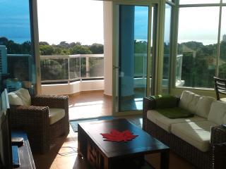 New apartment, ocean views, mountain views and no bugs! - Coronado vacation rentals