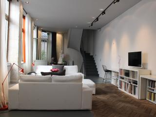 AMAZING LOFT IN TRENDY PARIS - Paris vacation rentals