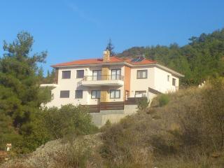 Nice 4 bedroom Villa in Moniatis with Internet Access - Moniatis vacation rentals
