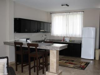 Ocean View Condo Vacation Rental 207 - Bahia de Caraquez vacation rentals