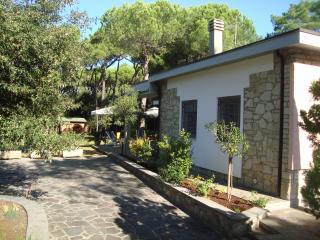 Charming Tuscan villa near the beach with terrace and private garden, sleeps 5 - Marina di Castagneto Carducci vacation rentals