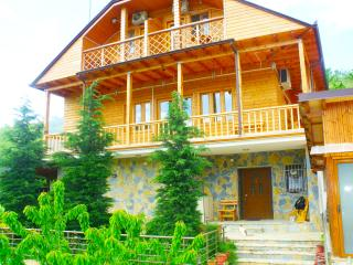 Nice Lodge with Internet Access and A/C - Pogradec vacation rentals