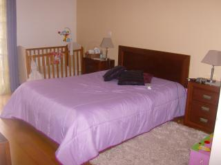 House for rent typical of Island of Madeira - Ribeira Brava vacation rentals