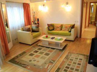 Casata 4 - 2 bedroom apartment - Bucharest vacation rentals