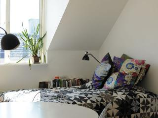 Wonderful Copenhagen apartment  near Botanical Garden - Copenhagen vacation rentals