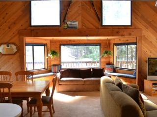 3 bedroom Cabin with DVD Player in South Lake Tahoe - South Lake Tahoe vacation rentals