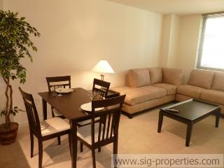 Great 1 BD in Penn Quarter(149) - District of Columbia vacation rentals